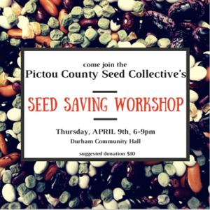 seed workshop